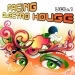 Facing Electro House Vol. 1