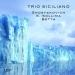 Shostakovich, Sollima & Betta : Trios