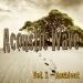 Acoustic Wave, Vol. 1