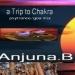 A Trip to Chakra