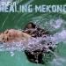 Healing Mekong