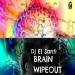 Brain Wipeout