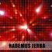 Habemus Jerba