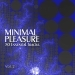 Minimal Pleasure, Vol. 2