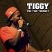 The Tiggy-Tionary