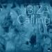Ibiza Calling, Vol. 2