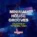 Minimal House Grooves
