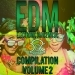 Electronic Dance Music Compilation, Vol. 2