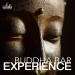 Buddha Bar Experience