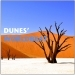 Dunes' Worldbeat