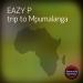 Trip to Mpumalanga