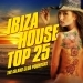 Ibiza House Top 25, Vol. 1
